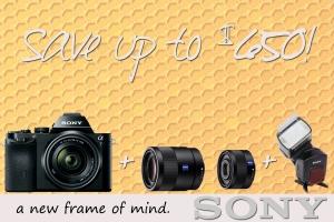 Sony-A7-February