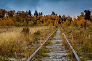Kenosha Pass Railroad Tracks, Debbie Gilliam
