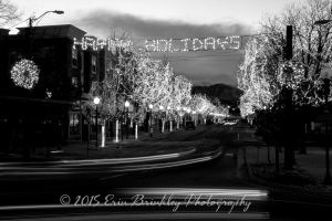 Happy Holidays in Littleton, Colorado, 2008
