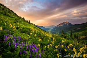 DB-140719-Colorado-4354-Edit-Web